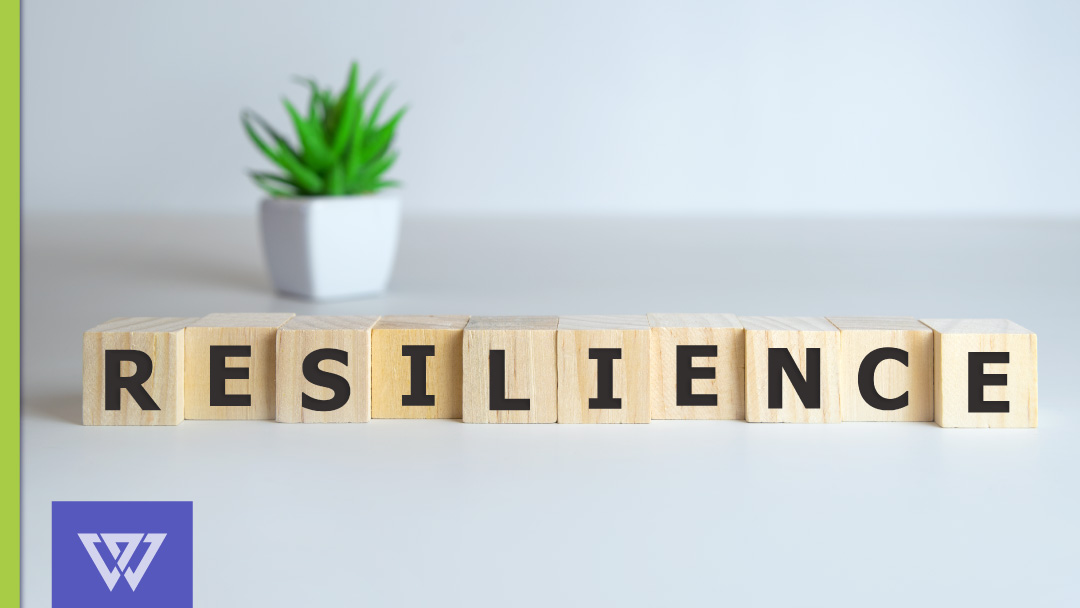 The Elastic Executive: How to Develop Change Resilience
